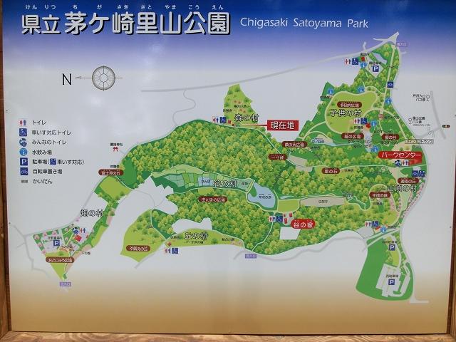 10月活動 茅ヶ崎里山公園